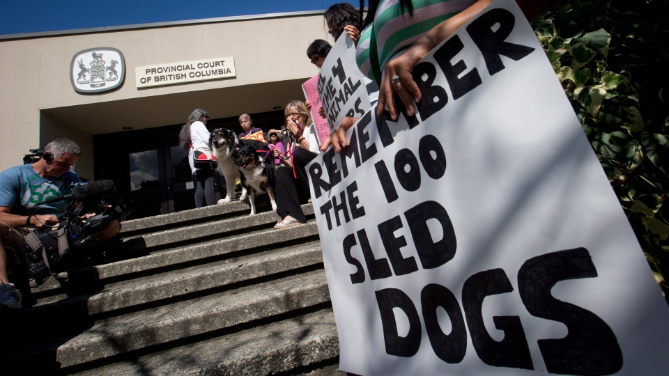 Demonstrators protest outside provincial court during an appearance by accused sled dog killer Robert Fawcett in North Vancouver, B.C., on Thursday Aug. 30, 2012.  (Darryl Dyck / THE CANADIAN PRESS)