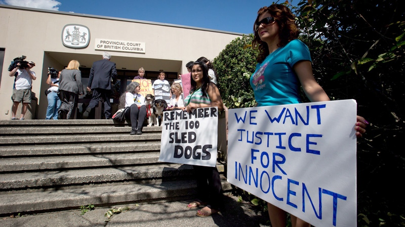 Demonstrators protest outside Provincial Court during an appearance by accused sled dog killer Robert Fawcett in North Vancouver, B.C., on Thursday August 30, 2012. (Darryl Dyck  / THE CANADIAN PRESS)