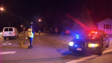 A male pedestrian was killed in a hit and run accident in Surrey, B.C. Sept. 4, 2010. (CTV)