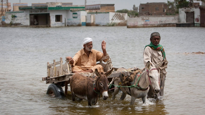 Pakistani flood survivors wade through floodwater in Sujawat, Sindh province, Southern Pakistan, Sept 4, 2010. (AP / Vincent Thian)