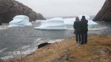An iceberg can be seen in the water at Quidi Vidi, in St. John's, N.L., a quaint fishing village, Th