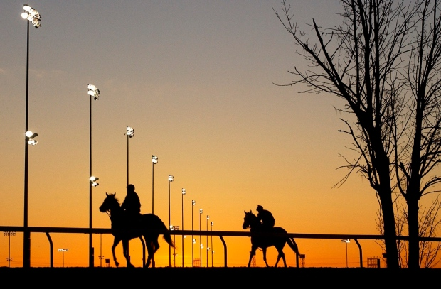 Horses, riders, sunrise, silhouette, Woodbine Racetrack