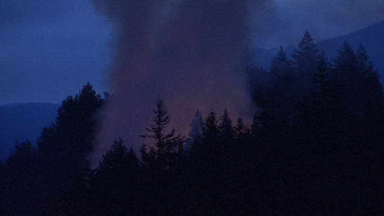 An early morning brush fire broke out near Porteau Cove on Wednesday.