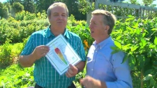 Gardening guru Mark Cullen talks to Canada AM about how to get the most out of your vegetable garden