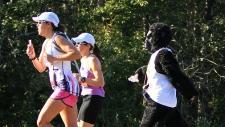 Edmontonians take part in the Edmonton Gorilla Run. PHOTO: Robert Antoniuk.