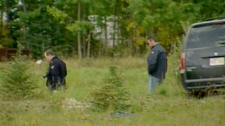 Police look for evidence related to the disappearance of Lyle and Marie McCann at a rural property west of Edmonton, Saturday, Sept. 11, 2010.