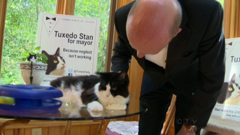 Tuxedo Stan with owner Hugh Chisholm who launched the Tuxedo Party, with Stan the cat as its leader.