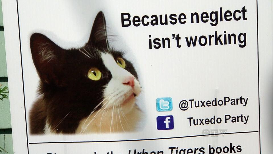 Tuxedo Stan's campaign posters.