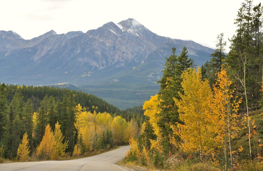 Road work starting in Jasper National Park