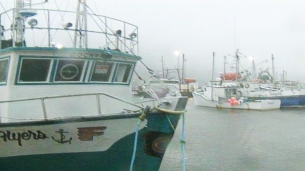 Boats docked in St. John's are lashed with high winds, waves and rain as Hurricane Igor approaches the N.L. coast on Tuesday, Sept. 21, 2010.