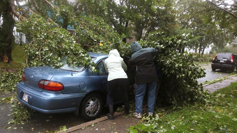 People try to move a branch off of a vehicle after high winds from Igor toppled trees in St. John's,  Nfld., Tuesday Sept. 21, 2010. (Paul Daly / THE CANADIAN PRESS)