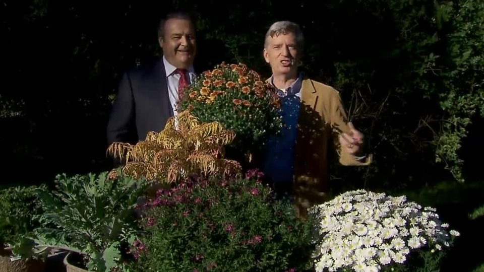 Mark Cullen revealed his favourite flowers and plants to add to a fall garden on Canada AM on Wednesday, Oct. 3, 2012.