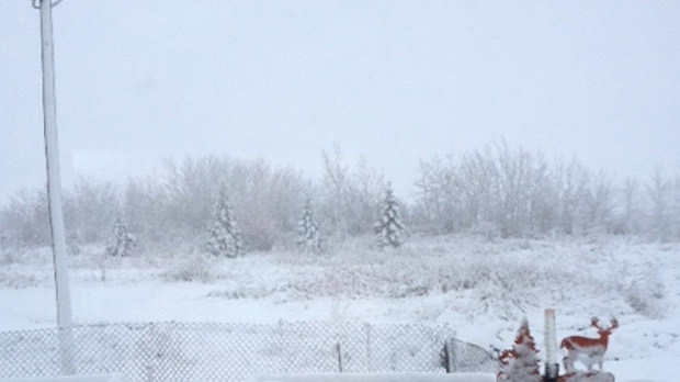 Snowfall is shown in Vita in southeastern Manitoba on Oct. 4, 2012. (image courtesy Venessa Graydon)