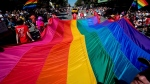 A giant rainbow flag is carried down Robson Street during the Vancouver Pride Parade in Vancouver, B.C., on Sunday August 5, 2012. (Darryl Dyck / THE CANADIAN PRESS)
