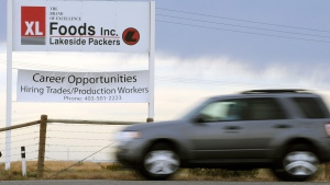 A vehicle passes the main entrance sign leaving XL Foods' Lakeside Packers plant at Brooks, Alberta on Monday, Oct. 1, 2012. (Larry MacDougal / THE CANADIAN PRESS)