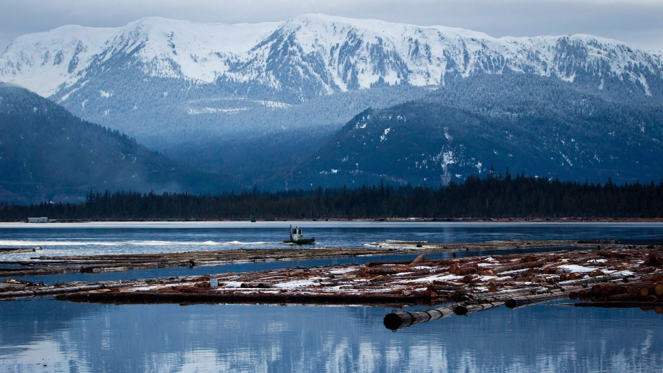 A worker uses a small boat to move logs on the Douglas Channel at dusk in Kitimat, B.C., on January 11, 2012. Enbridge Inc.'s response plan for a potential spill of Northern Gateway oil into the pristine waters off British Columbia doesn't take into account the unique oil mixture the pipeline would actually carry, documents show. THE CANADIAN PRESS/Darryl Dyck