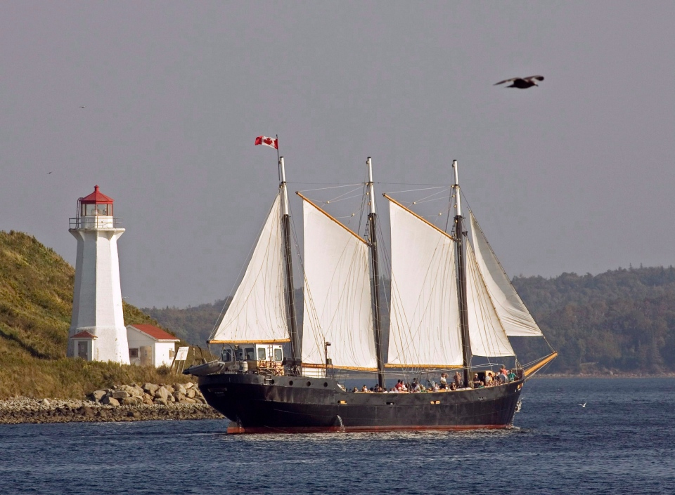 The tall ship Silva, built in Sweden in 1939 and used as a charter vessel, sails past Georges Island in Halifax harbour on Wednesday, Sept. 26, 2007. (Andrew Vaughan / THE CANADIAN PRESS)