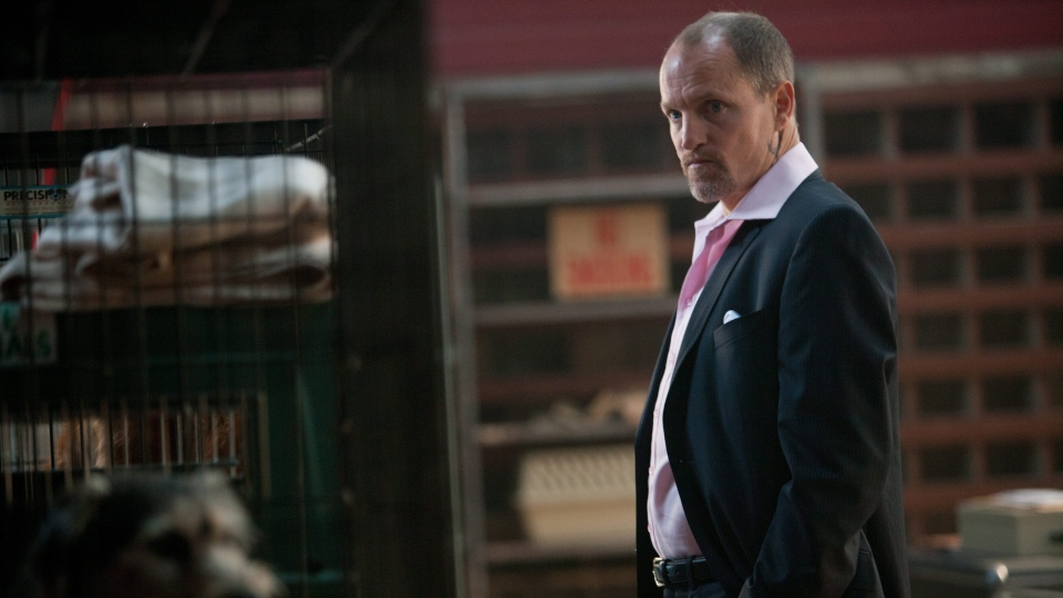 Woody Harrelson in a scene from Alliance Films' 'Seven Psychopaths.'
